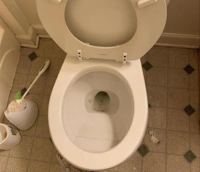 A Clean toliet after a professional cleaning