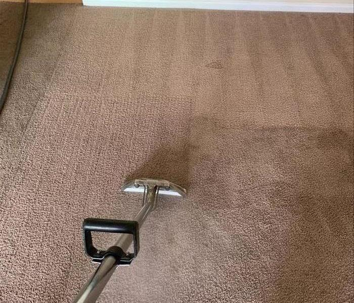 Carpet cleaning in progress at an apartment community in Laurens, SC