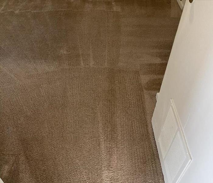 Carpet Cleaning in Newberry, SC