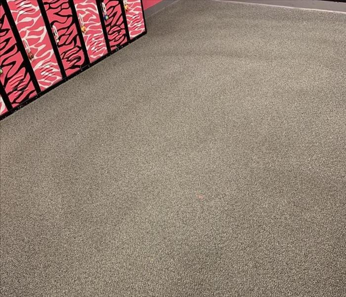 Carpet Cleaning results at a Dance Studio in Laurens, SC