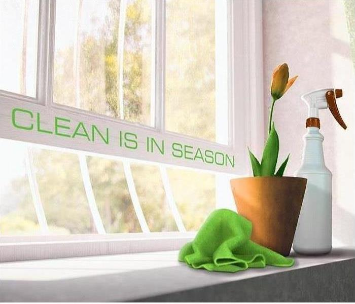 Cleaning Spring Cleaning Tips and Tricks