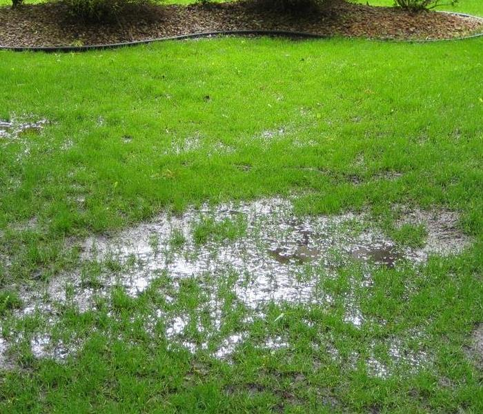 Pooling water over the septic area after heavy rains