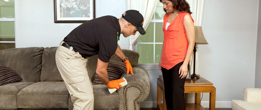 Laurens, SC carpet upholstery cleaning
