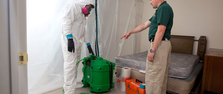 Laurens, SC mold removal process